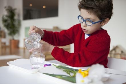 Montessori: bases teóricas, práticas e metodológicas